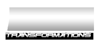 fiit logo silver1